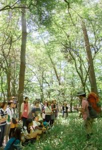 森の分科会